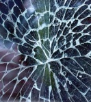 119 cracked glass 48439