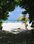 202 Maldives 57527