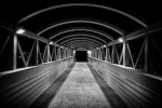 393 dark_bridge 906542