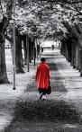 425 red_coat 860877