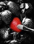 447 strawberry 849425
