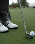 562 golfer 174455