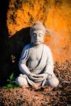 630 Buddha 877719