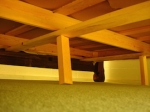 731 under bed 151076