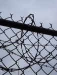 948 barbed wire 188333