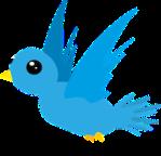 1036-bird-548654_640
