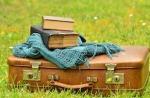 1062-luggage-1482697_640