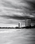 1075-beach-weimaraner-143753